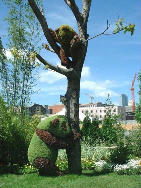 Topiary Panda