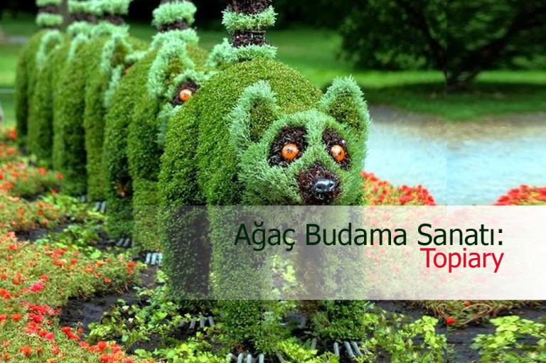 a1a510fdc0541 Ağaç Budama Sanatı Topiary Nasıl Yapılır? Topiary Sanatının İncelikleri