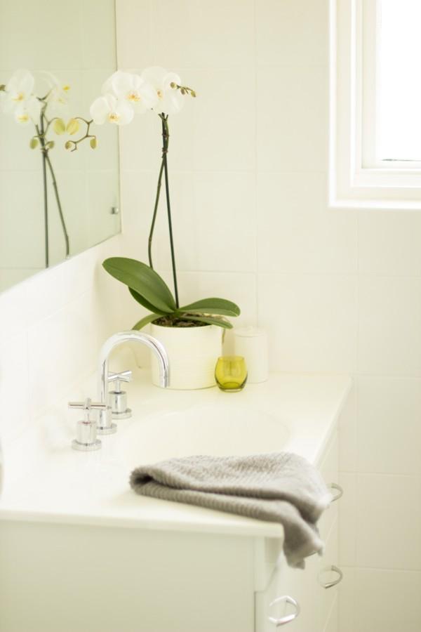 banyo-için-çiçek