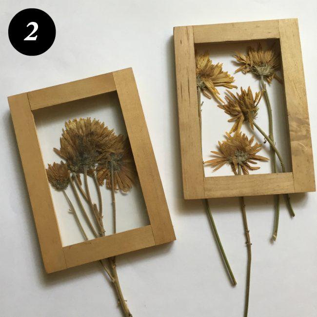 kuru çiçekleri çerçevelemek adım 3