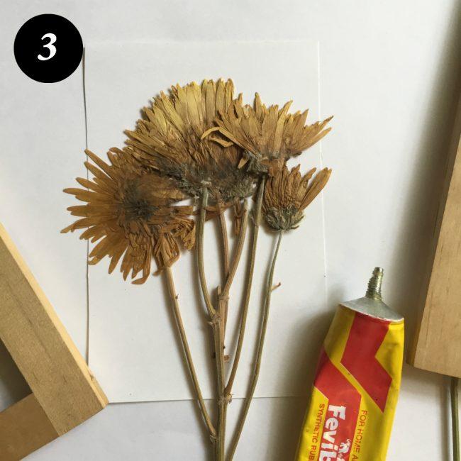 kuru çiçekleri çerçevelemek adım 4