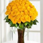 Sarı Güller - 199TL