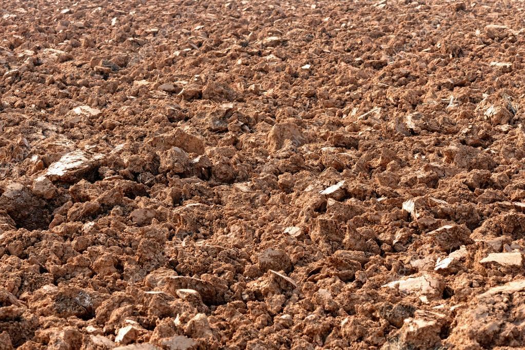 taşlı toprak