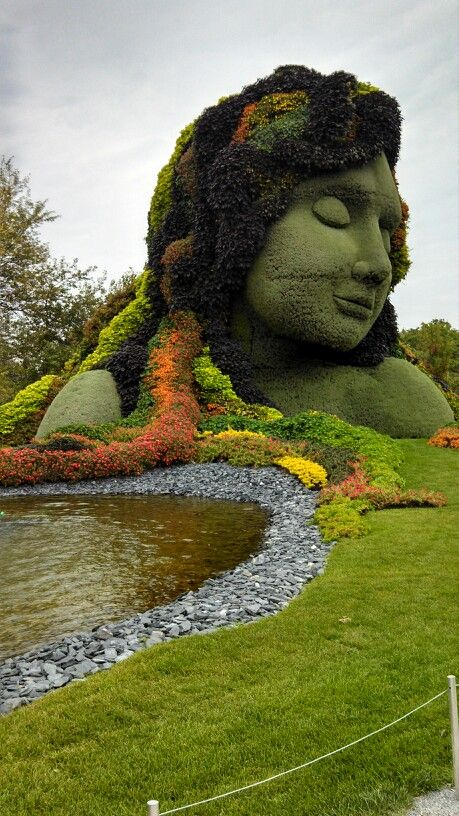 topiary büst