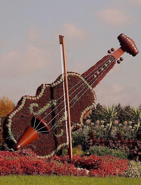 topiary keman