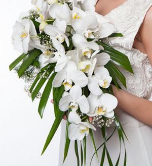 beyaz-orkide-gelin-buketi