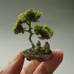 bonsai-etsy