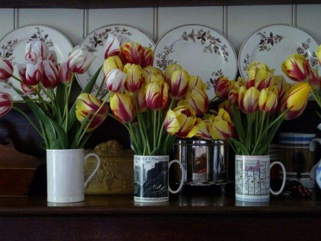 mutfakta çiçekler