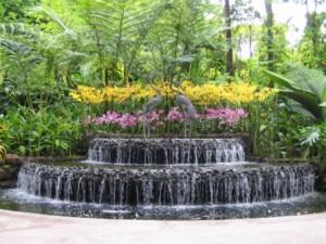 orkide parkı