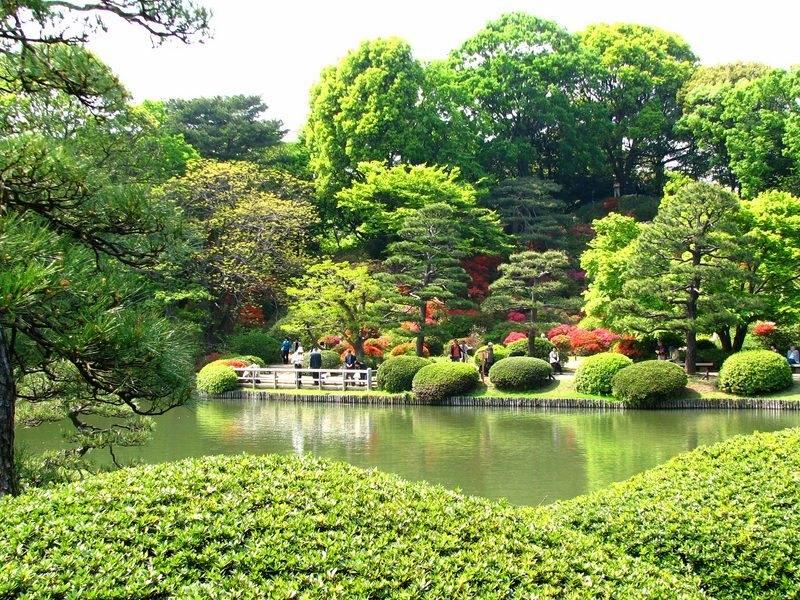 rikugien bahçesi