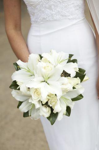 lilyum gelin çiçeği