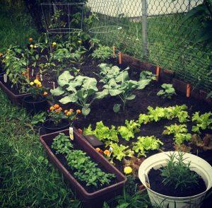 küçük bahçe