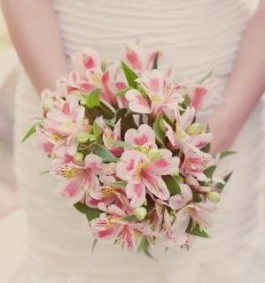 Alstroemeria düğün buketi pembe