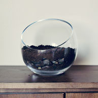 How-To-Terrarium (5)