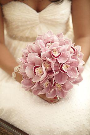 Orkide gelin çiçeği2