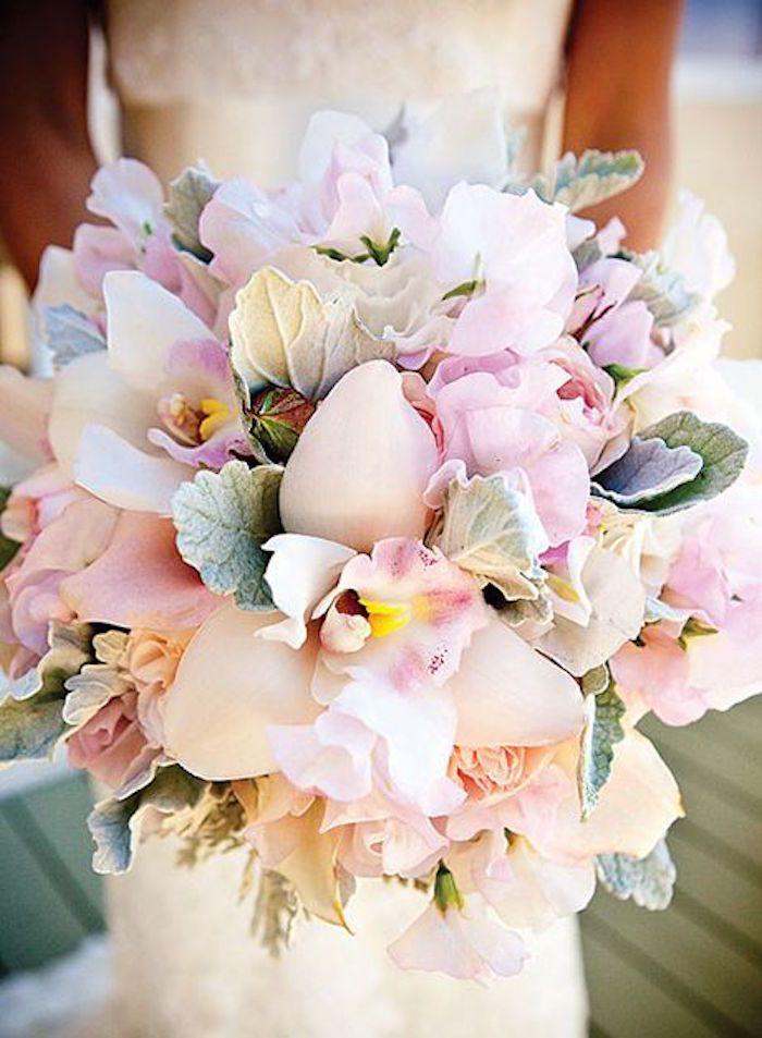 Orkide gelin çiçeği4