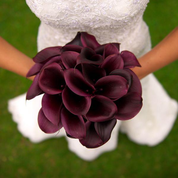 kala zambağı gelin çiçeği