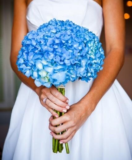 ortanca düğün çiçeği