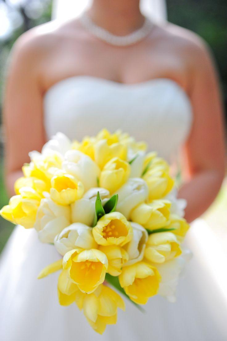 sarı lale gelin çiçeği