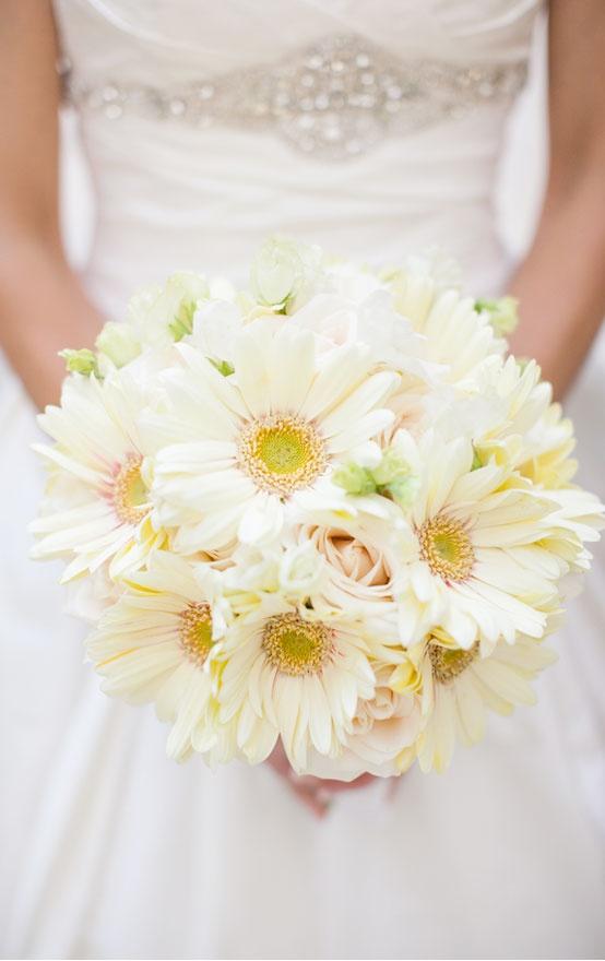 somon gerbera gelin çiçeği