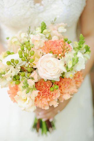 somon karanfil gelin çiçeği