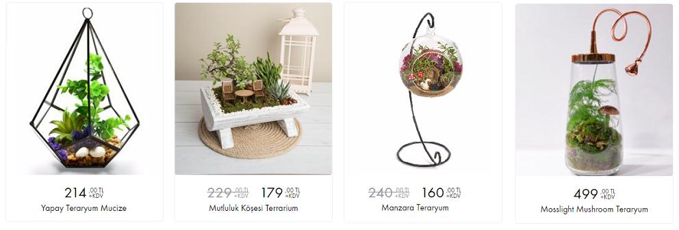 çiçek sepeti teraryum çeşitleri