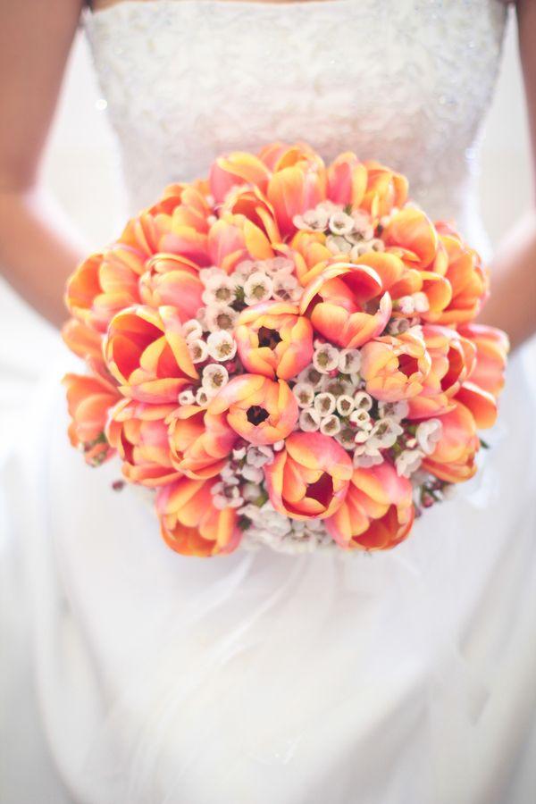 turuncu lale gelin çiçeği