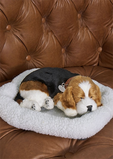 perfect-petzzz-beagle-hf177-1-1
