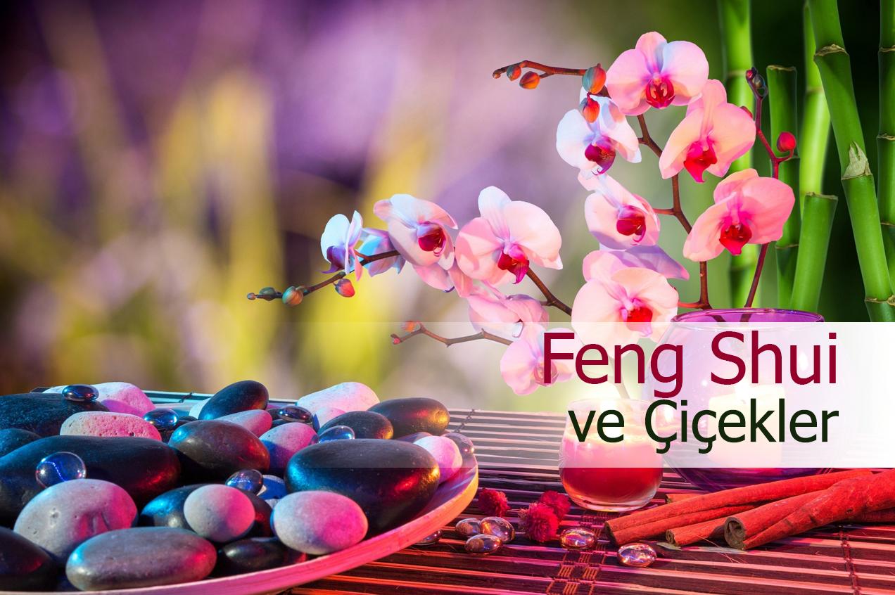Feng Shui Nasıl Kullanılır
