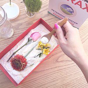 Borax ile Çiçek Kurutma
