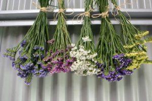 hava ile çiçek kurutma