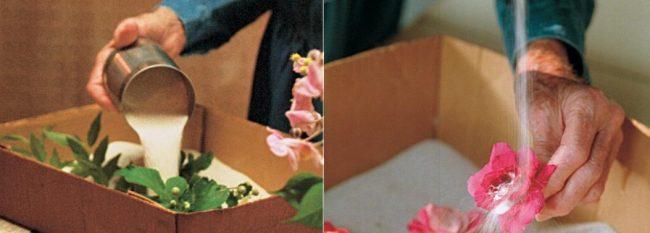 Kumda Çiçek Kurutma Yöntemi