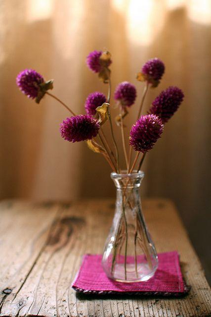 medine çiçeği dekor