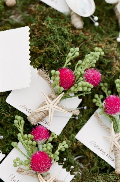 yaka çiçeği medine çiçeği