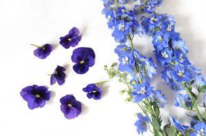 canlı çiçekler ile çanta yapımı