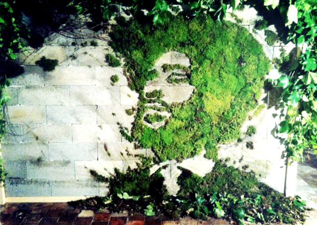 moss-graffiti-face