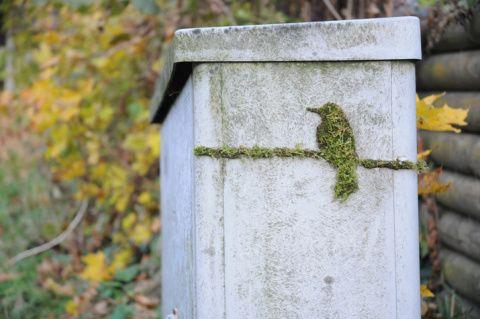 yeşil grafiti