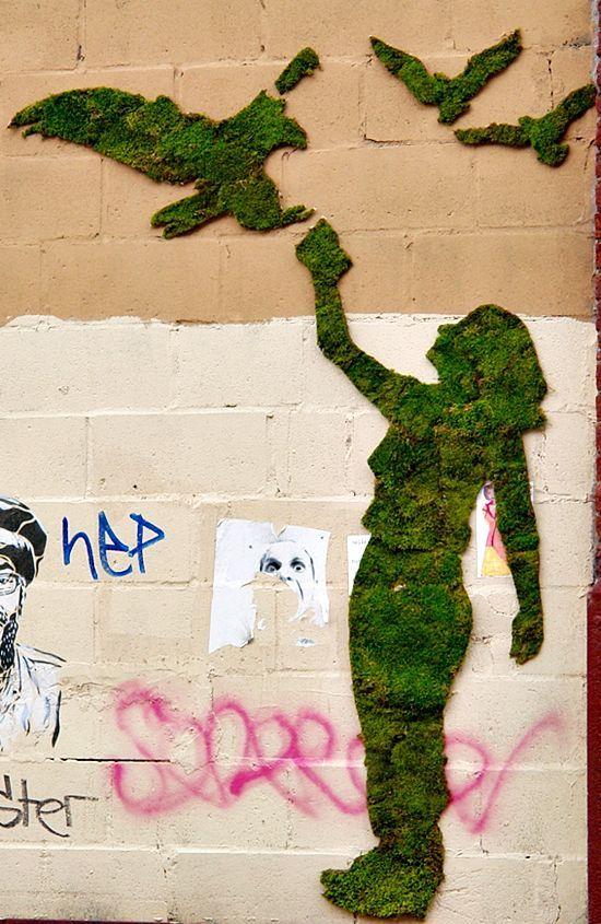 yosun grafiti