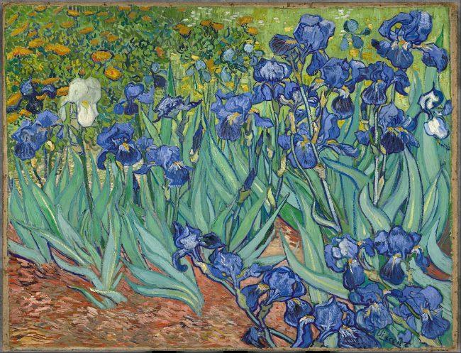 Vincent van Gogh - İrisler