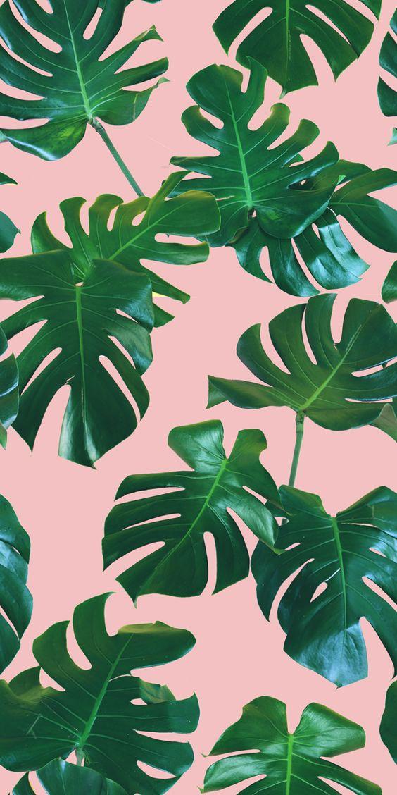 yaprak desenli duvar kağıtları