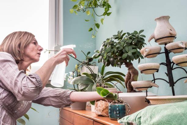 Bitki İlaçlama