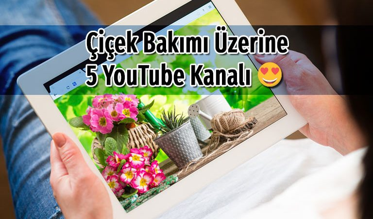 Çiçek Bakımı Hakkında Bilgi Alabileceğiniz 5 YouTube Kanalı