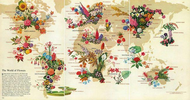 Çiçek Haritası