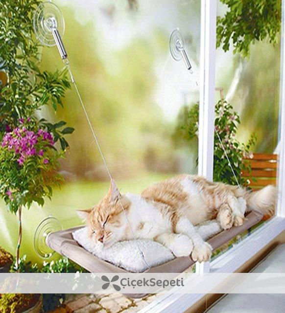 Cama Asılan Kedi Yatağı