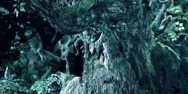 ağaç sakal