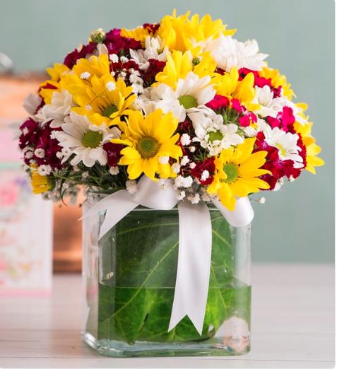 Papatya Gülümsemesi Çiçek Aranjmanı