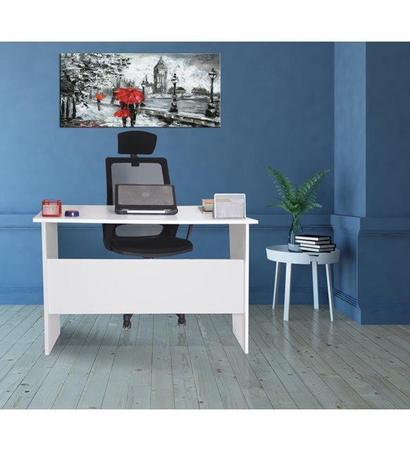 Evde bilgisayar başında çalışanlar için Pisces çalışma masası