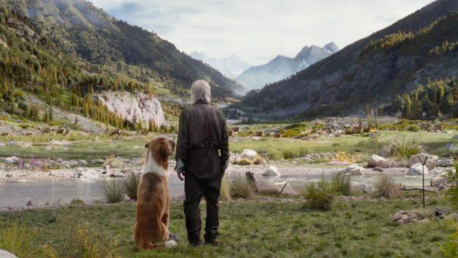 2020'nin en iyi 10 filmi - The Call of the Wild