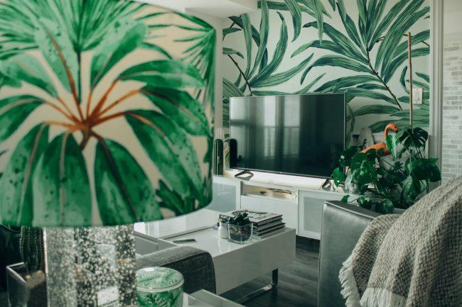 2021 dekorasyon trendleri - iç mekan bitki