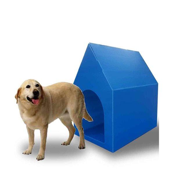 köpek evi